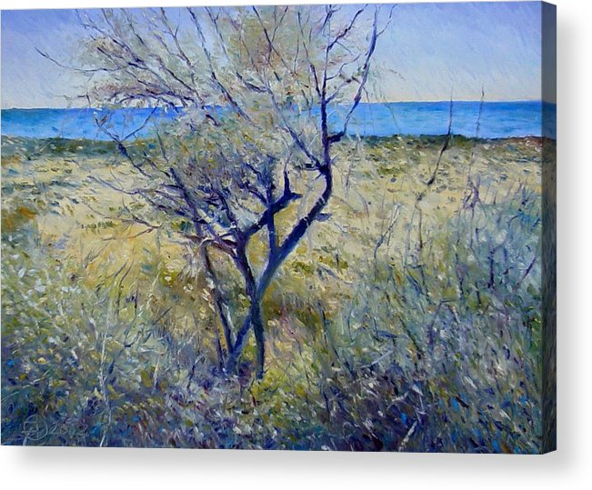 Impressionism Acrylic Print featuring the painting Tree At Aseeb Oman 2002 by Enver Larney