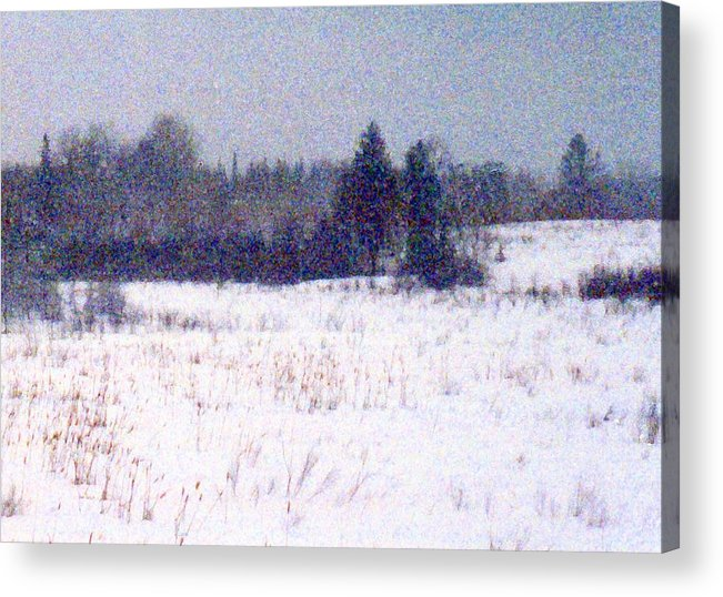Snow Acrylic Print featuring the photograph Trees By The Snow Field Ae by Lyle Crump
