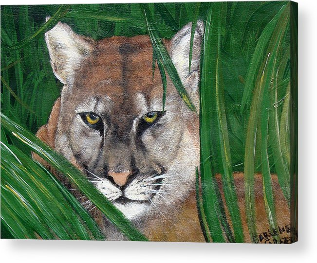 Panther Acrylic Print featuring the painting Watching Florida Panther by Darlene Green