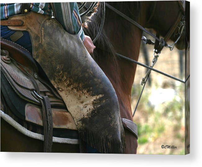 Cowboy Acrylic Print featuring the photograph Well Used Chinks.. by Carol Miller