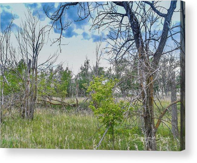 Heartland Acrylic Print featuring the photograph Ghost Town Kansas by Dawn Hough Sebaugh