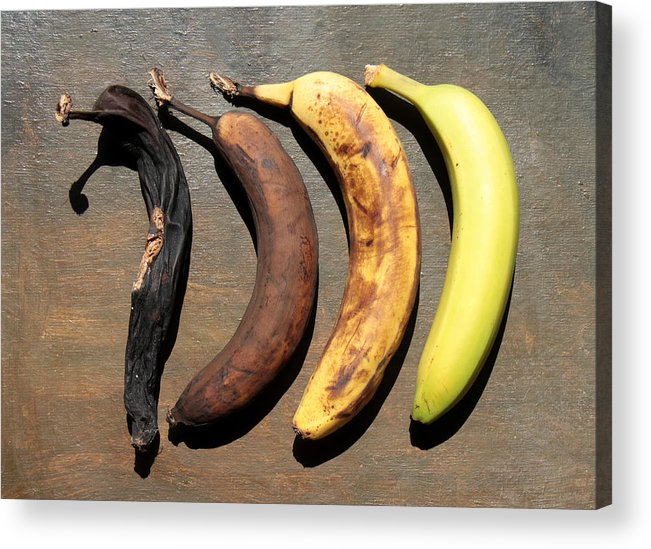 Banana On Table Aging Process Acrylic Print featuring the photograph Aging Process Of Banana  On Table by Jörg Mikus