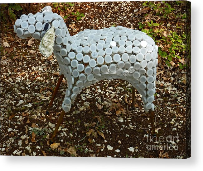 Sheep Acrylic Print featuring the sculpture Brebis by Katia Weyher