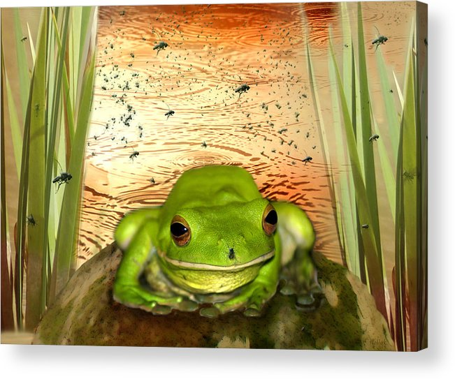 Nature Acrylic Print featuring the photograph Froggy Heaven by Holly Kempe