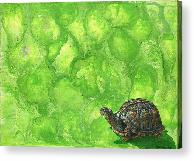 Lettuce Acrylic Print featuring the painting Lettuce Fetish by Cara Bevan