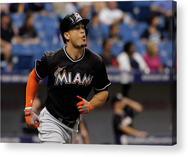 American League Baseball Acrylic Print featuring the photograph Miami Marlins V Tampa Bay Rays by Brian Blanco