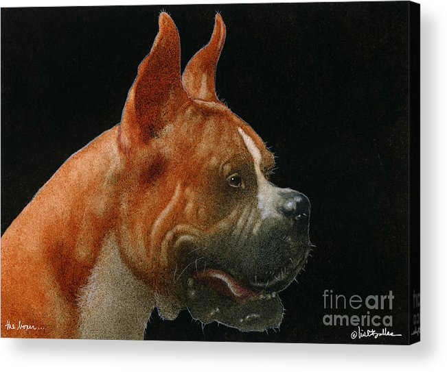 Will Bullas Acrylic Print featuring the painting The Boxer... by Will Bullas