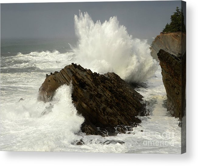 Oregon Acrylic Print featuring the photograph Wave At Shore Acres by Bob Christopher