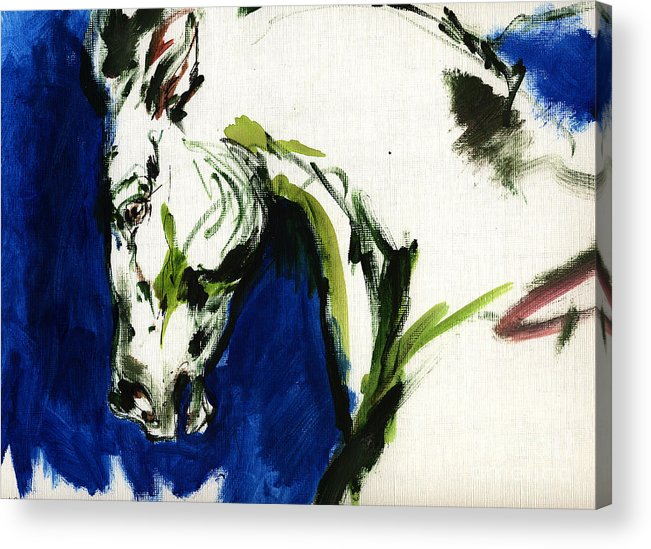 Horse Artwork Acrylic Print featuring the painting Wild Horse by Angel Ciesniarska