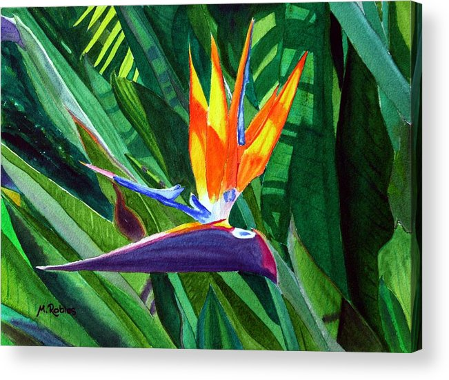 Flower Acrylic Print featuring the painting Bird-of-paradise by Mike Robles