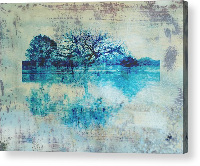 Blue Acrylic Print featuring the photograph Blue On Blue by Ann Powell