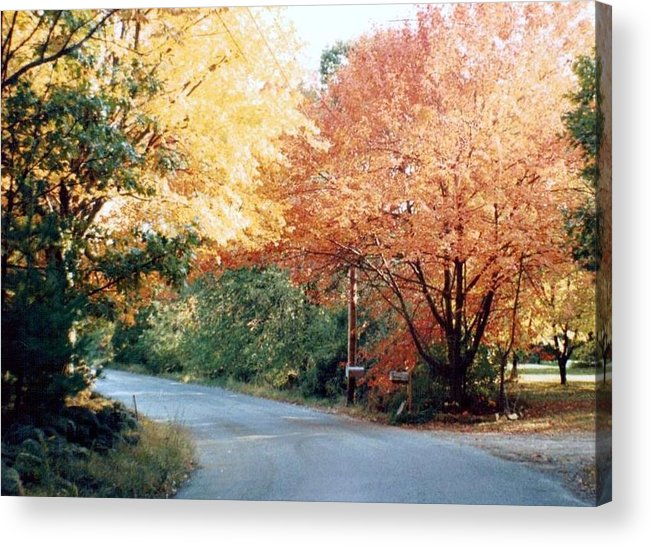 Photograph Acrylic Print featuring the photograph Fall 14 Country Corner by Debbie Wassmann