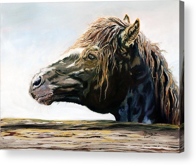 Acrylic Print featuring the painting Fenced In by Mike Kinsey