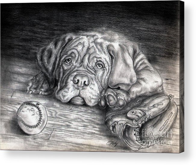 Dog Acrylic Print featuring the drawing Want To Play by Kathleen Kelly Thompson