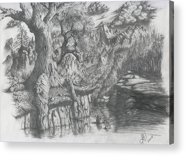 Tree Acrylic Print featuring the drawing Wise Old Tree by Scott Gilbert