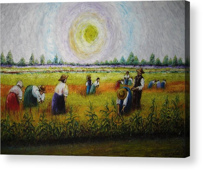 Campagna Acrylic Print featuring the painting La Risaia by Luca Corona