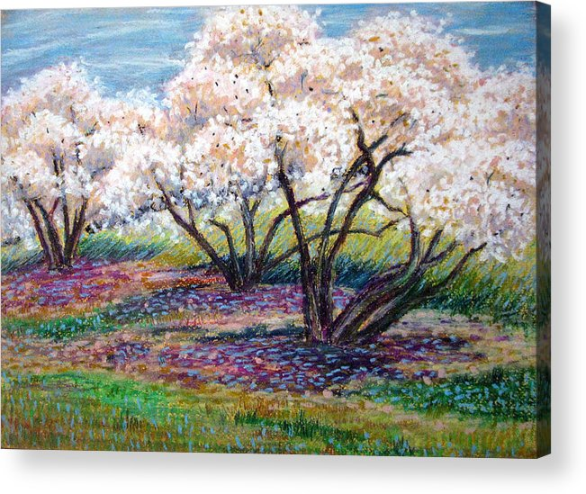 Oil Pastel Acrylic Print featuring the painting Spring Has Sprung by Art Nomad Sandra Hansen