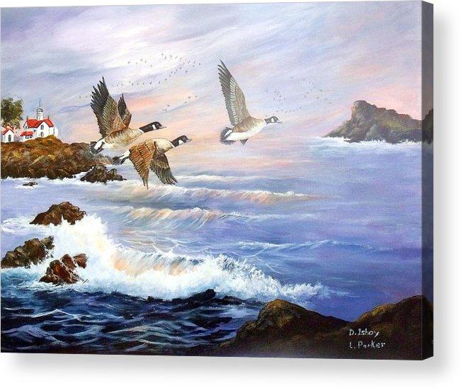 Aleutian Geese /lighthouse Acrylic Print featuring the painting Aleutian Geese With Lighthouse by Lynne Parker