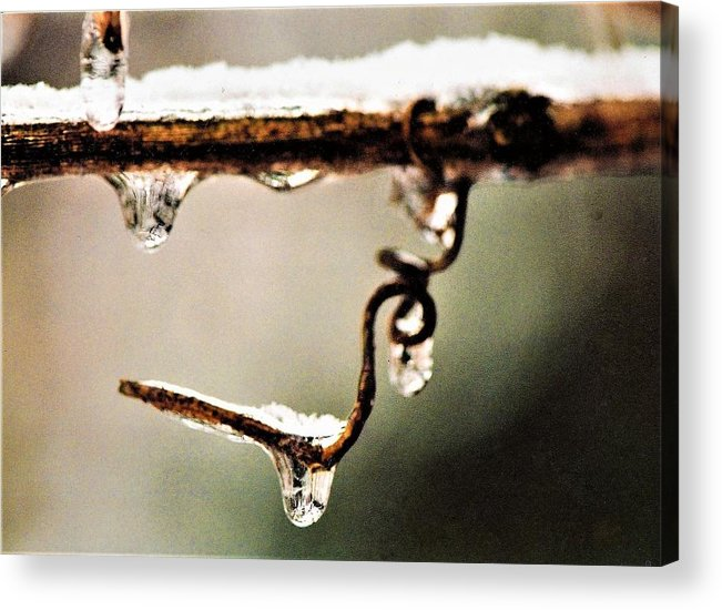 Frozen Acrylic Print featuring the photograph An Unwrapped Twizzle by Dennis Symes