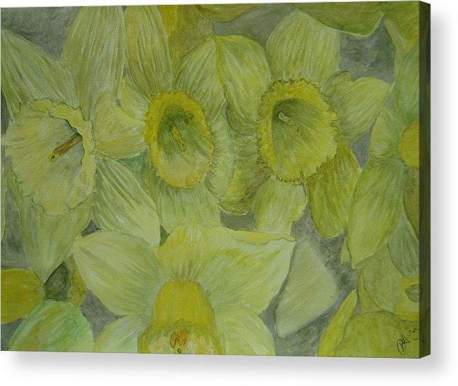 Flower Acrylic Print featuring the painting Daffodils by Dan Anning