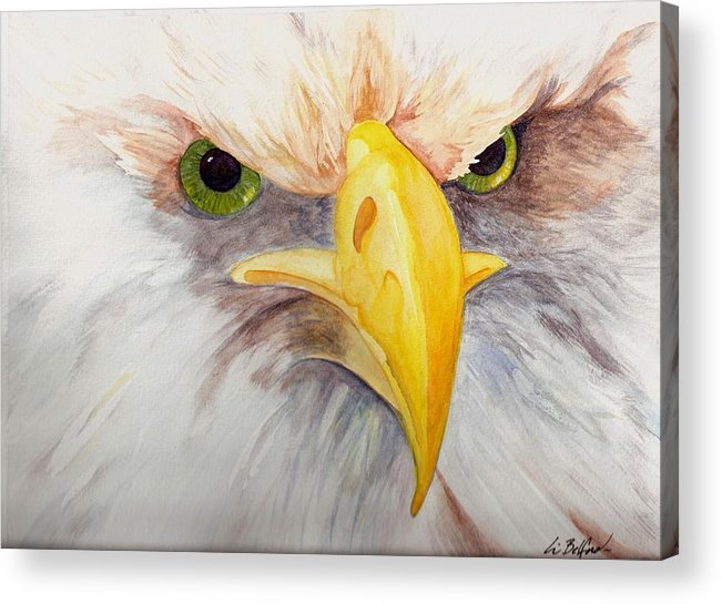 Eagle Acrylic Print featuring the painting Eagle Stare by Eric Belford