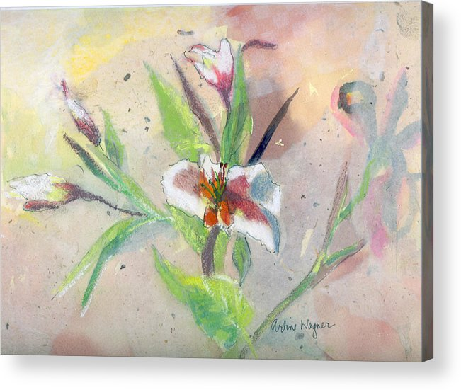 Flower Acrylic Print featuring the painting Faded Lilies by Arline Wagner