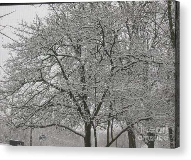 Acrylic Print featuring the photograph First Snowfall Of The Season by Barb Montanye Meseroll