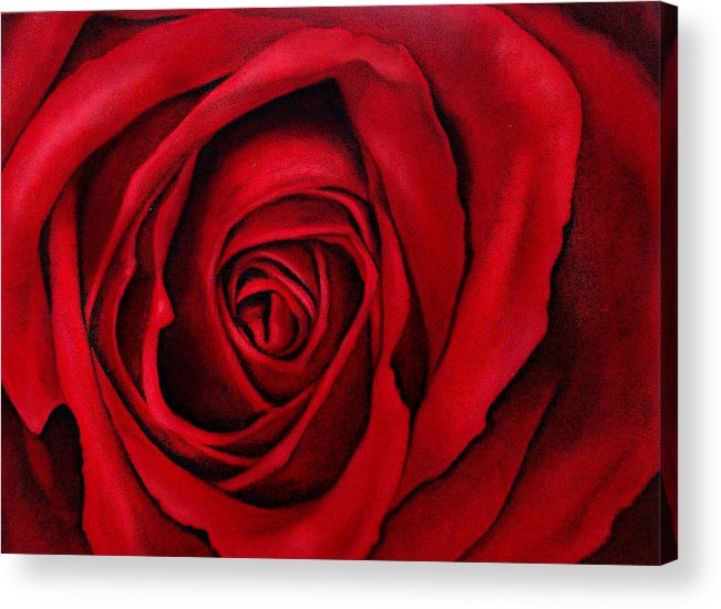 Rose Acrylic Print featuring the painting Harumi by Claudia Lardizabal