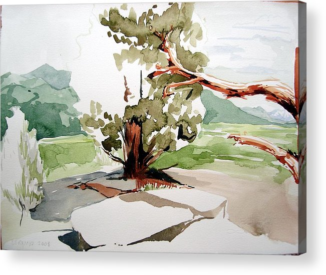 High Desert Landscape River Blue Mountains Outdoors Rural Wildlife Red Green Trees Rocks Nature Acrylic Print featuring the painting Kennedy Meadows Tree by Amy Bernays