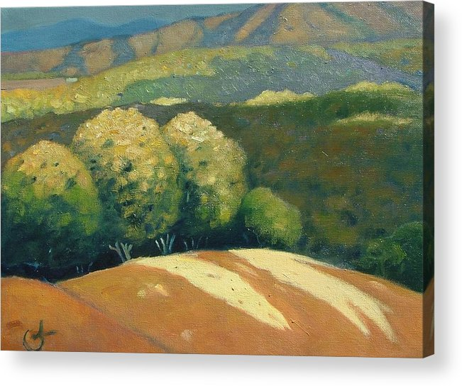 Hills Acrylic Print featuring the painting Last Kiss Of Sunlight by Gary Coleman