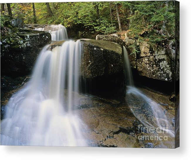 Wilderness Acrylic Print featuring the photograph Ledge Brook - White Mountains New Hampshire Usa by Erin Paul Donovan