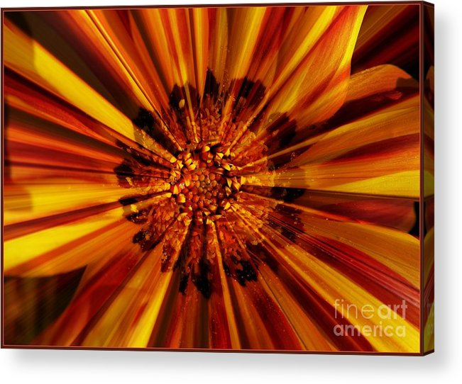 Nature Abstract Acrylic Print featuring the photograph Let Your Light Shine by Carol Groenen