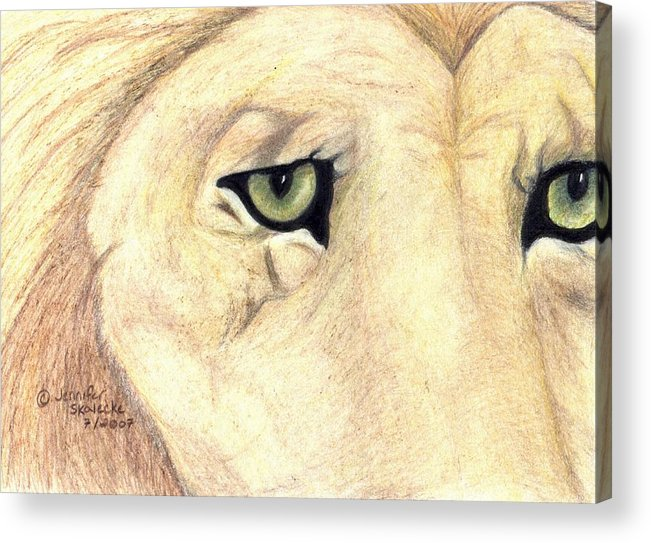 Lion Acrylic Print featuring the drawing Longing by Jennifer Skalecke