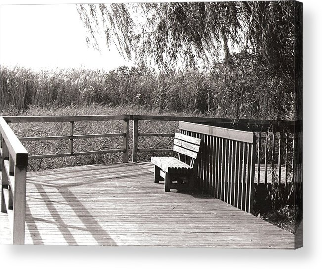 Park Acrylic Print featuring the photograph Look Out Point by Eric Belford