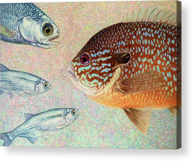 Fish Acrylic Print featuring the painting Mooneyes, Sunfish by James W Johnson