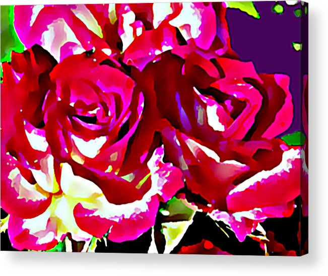 Roses Acrylic Print featuring the digital art Roses by John Toxey