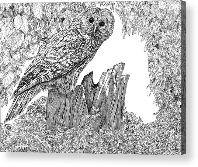 Birds Acrylic Print featuring the mixed media Russian Owl by Leonie Bell
