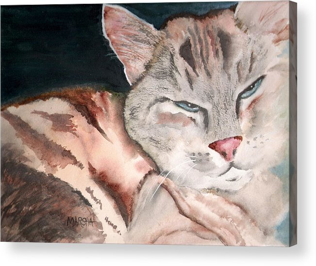 Animal Cat Painting Watercolor Acrylic Print featuring the painting Sleepy Cat by Marsha Woods