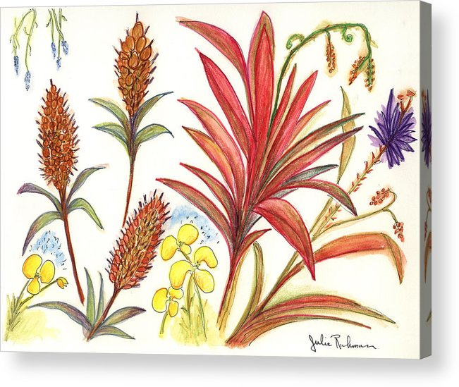 Red Flowers Acrylic Print featuring the painting Spiky Florida Flowers by Julie Richman