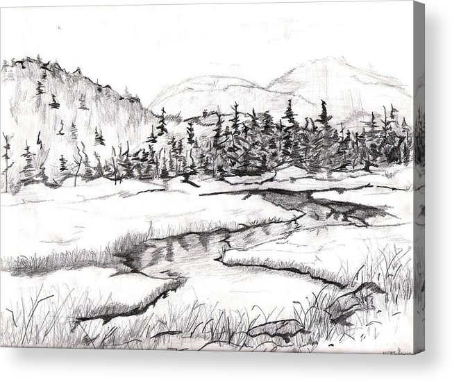 Landscape Acrylic Print featuring the drawing Stream by Katina Cote