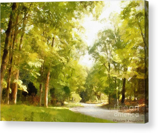 Road Acrylic Print featuring the photograph The Road Home by Paulette B Wright