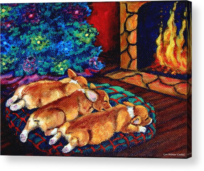 Pembroke Welsh Corgi Acrylic Print featuring the painting Toasty Toes by Lyn Cook