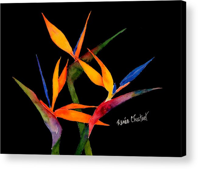 Birds Of Paradise Acrylic Print featuring the painting Neons Of Paradise by Renee Chastant