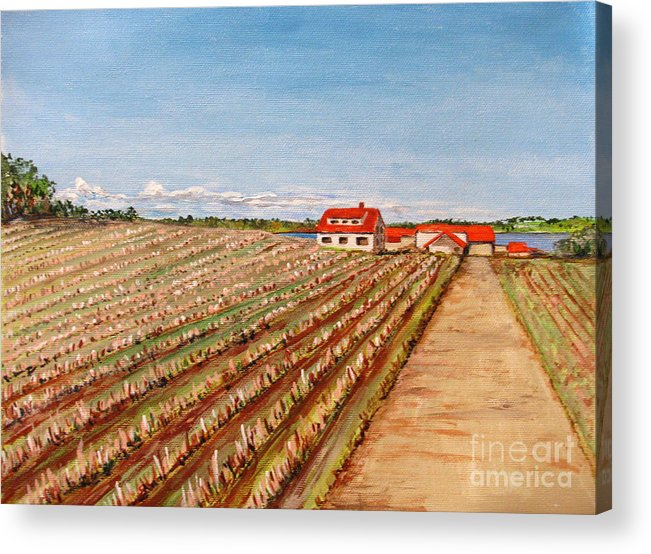 Landscape Acrylic Print featuring the painting Norway Farm by Nancie Johnson