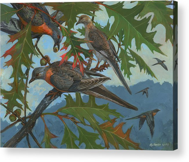 Wildlife Acrylic Print featuring the painting Passenger Pigeon by ACE Coinage painting by Michael Rothman