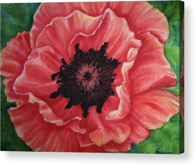 Poppy Acrylic Print featuring the painting Poppy by Conni Reinecke