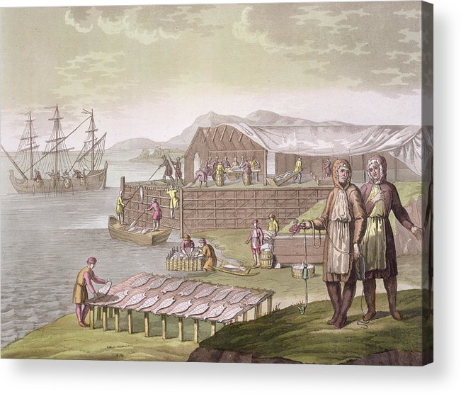 Giulio Acrylic Print featuring the drawing The Fishing Industry In Newfoundland by G Bramati