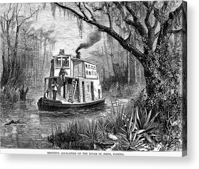 1874 Acrylic Print featuring the photograph Florida: St. Johns River by Granger