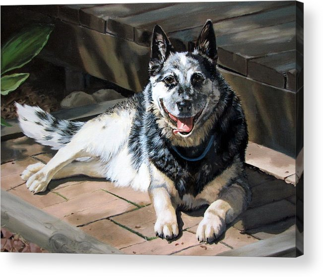 Dog Acrylic Print featuring the painting A Man's Best Friend by Sandra Chase