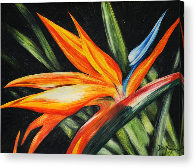 Flowers Acrylic Print featuring the painting Bird Of Paradise by Dee Youmans-Miller